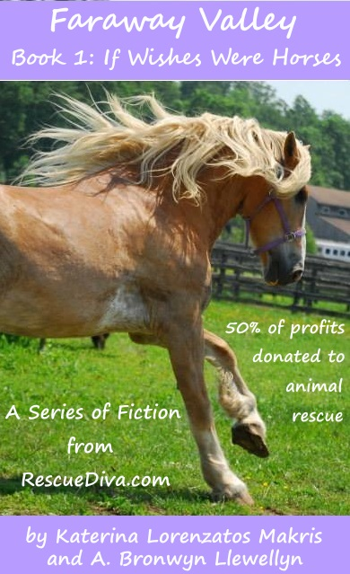 New fiction series! Romance and horse rescue in 'Faraway Valley'
